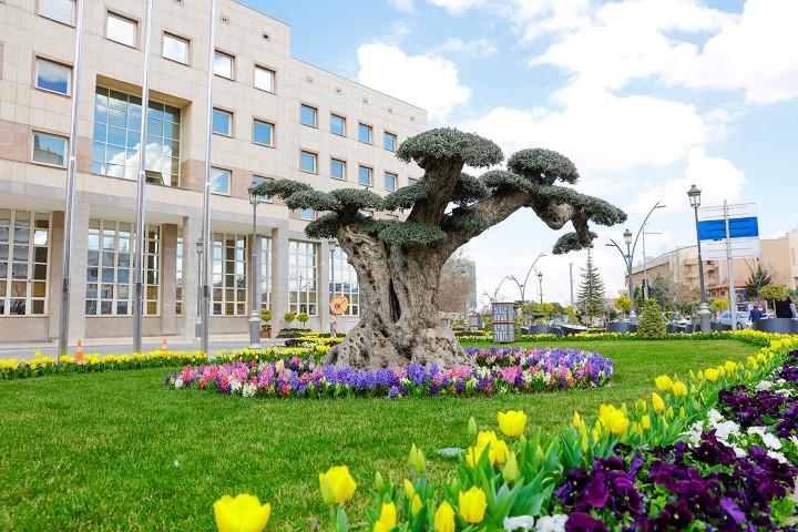 Büyükşehir 4 milyon mevsimlik çiçek dikti
