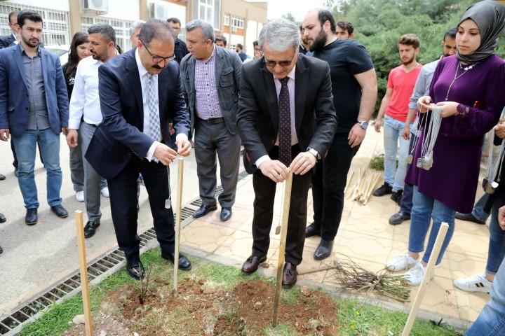 GAÜN'de Afrin Şehitleri için gül dikildi