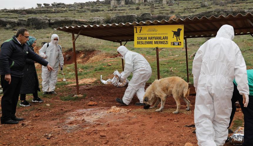 Küresel Salgına Karşı Hayvan Besleme Noktaları dezenfekte edildi