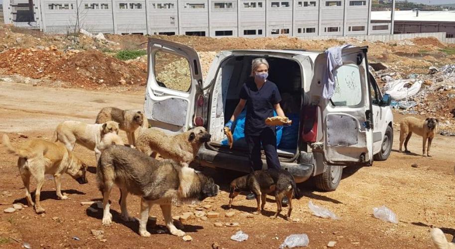 ANKA ve CAHİDE Aç Kalan Sokak Hayvanlarını Besledi