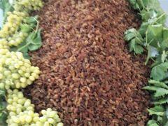 Kuru üzüm ihracatçıları TMO ile güçbirliğinin devamını istiyor