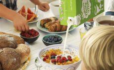 """1 Haziran Dünya Süt Günü: """"Sağlıklı yaşam için güvenli süt tüketin"""""""