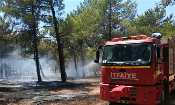 Burç Ormanı'ndaki Yangın Erken Müdahale İle Söndürüldü
