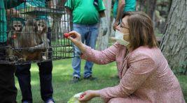 Gaziantep Hayvanat Bahçesi Yeni Üyelerine Kavuştu