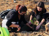 Gaziantepli Öğretmenler, Belen'de Yanan Ormanlara Fidan Dikti
