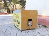Büyükşehir, Yılbaşı Kısıtlamasında Sokak Hayvanlarını Aç Bırakmayacak
