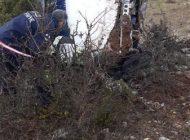 Şarampole Uçan Araçta 2 Kişi Öldü 3 Kişi Yaralandı