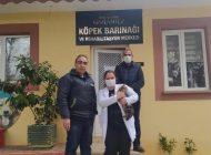 Sopayla Eziyet Edilen Kedi, Gaziantep Hayvanat Bahçesi'nde Emin Ellerde!
