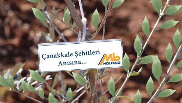MB HOLDİNG'ten Çanakkale Şehitlerine Vefa Fidan