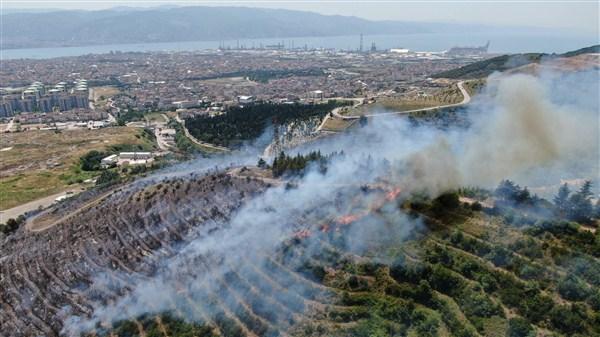 Kocaeli'de Orman Yangını