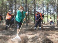 Başkan Şahin, Erikçe Ormanı'ndaki Temizlik Çalışmalarına Katıldı