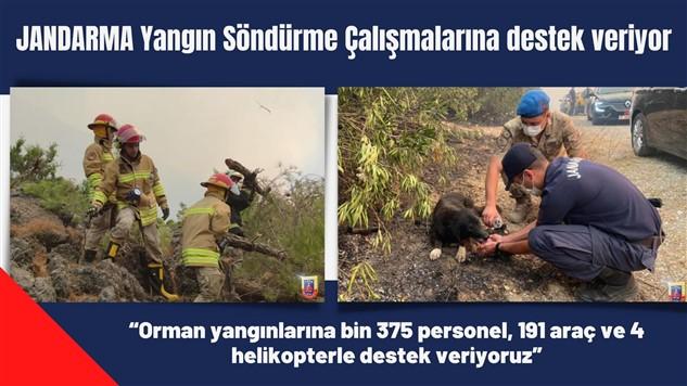 JANDARMA Yangın Söndürme Çalışmalarına destek veriyor
