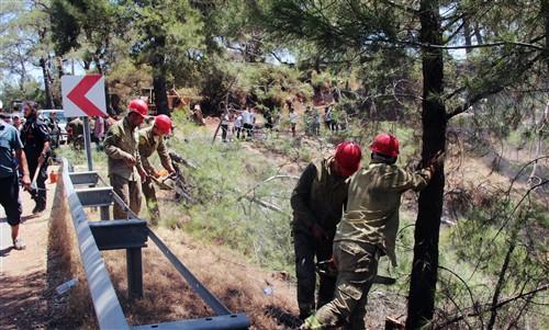 Orman Yangınlarına 'Gardaş' müdahalesi