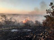 Korkutan orman yangını 5 saatte kontrol altına alındı